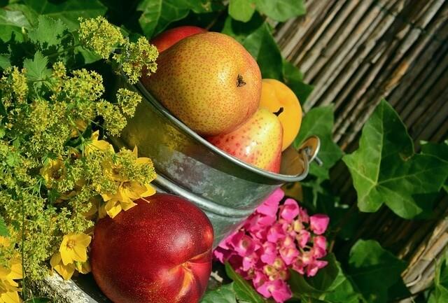 Wiadro wypełnione dojrzałymi owocami i warzywami