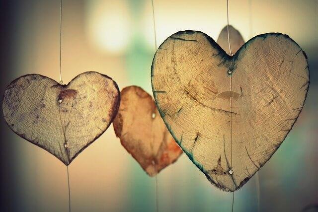 Serca z kory drzewa wiszą na nitkach