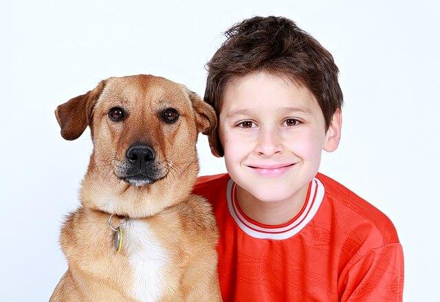 chłopak i pies