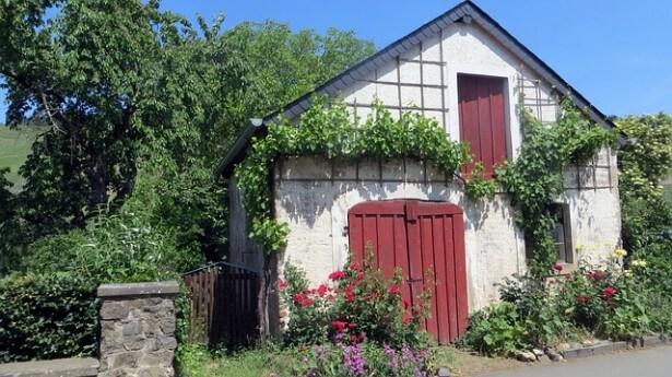 dom wśród zieleni i kwiatów
