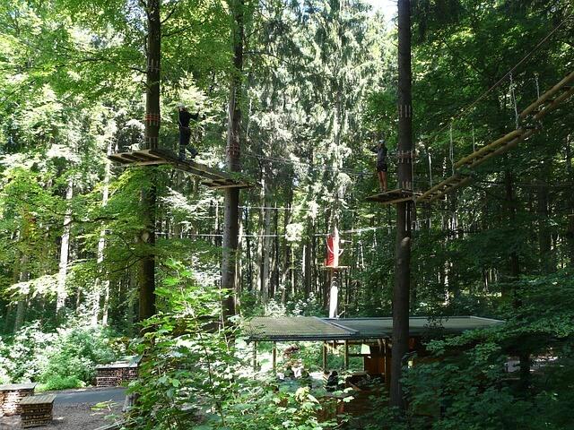 park linowy w Zamościu width=640 height=480 class=