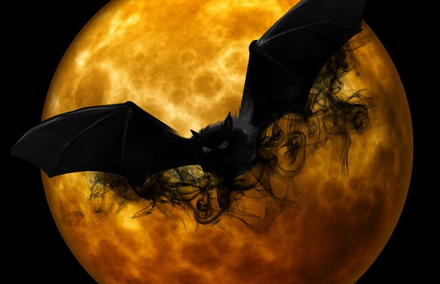 Nietoperz lecący na tle rozświetlonego księżyca