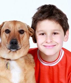 Jakie zwierzątko do domu czyli jakie zwierze wybrać dla dziecka