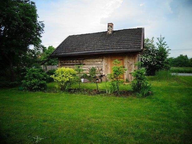 domek wśród zieleni