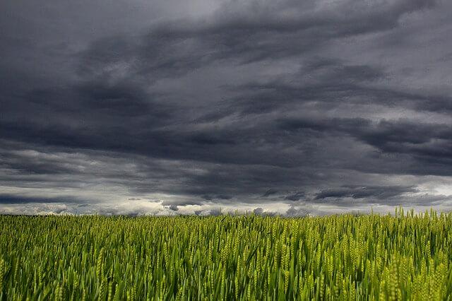 Ciemne chmury zapowiadające deszcz